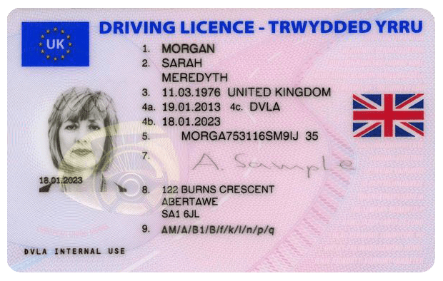 Driving Licence Verification Example